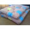 Металлические кровати для пансионата,  кровати для хосписов,  кровати для баз отдыха,  кровати для