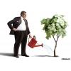 Поиск инвесторов,  партнёров,  меценатов